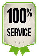 100 services